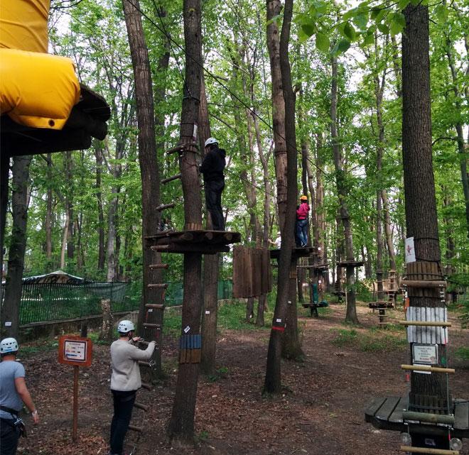 EZIT csapatépítő kalandpark